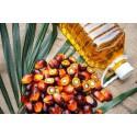 Palmový olej rafinovaný potravinářská kvalita