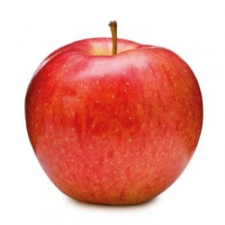 Vitaminátor jablko 100%